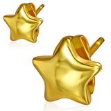 Stud de acero 144 - Gold ip estrella